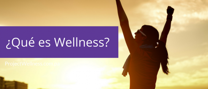 Qué es Wellness - Project Wellness