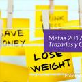 Blog - Tus Metas 2017 - Trazarlas y Cumplirlas